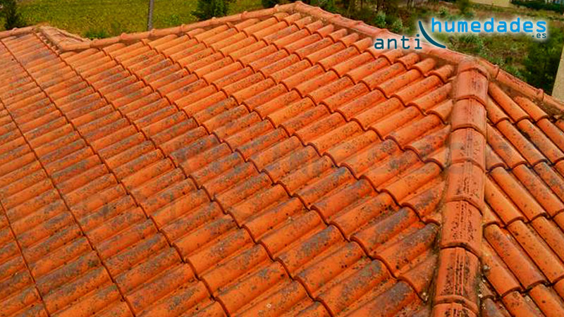 Elimina los hierbajos y manchas de moho con un limpiador específico para tejados